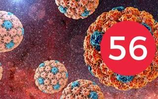 Что делать, если обнаружен ВПЧ 56 типа: методы лечения заболевания