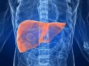 Опасность и методы лечения липоматоза печени