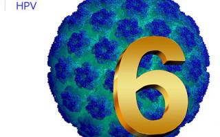Особенности ВПЧ 6 типа: опасность штамма и необходимость лечения