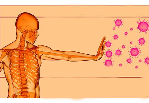 Эффективные иммуномодуляторы при впч thumbnail