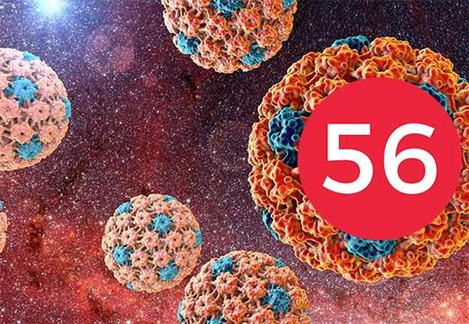 ВПЧ по 56 типу