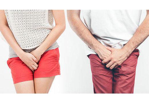 интимные места мужчины и женщины
